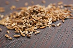 Caraway seeds. (Carum carvi) on dark table. Close-up photo Royalty Free Stock Photo