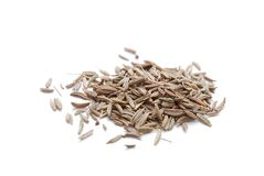 Caraway Seeds. Isolated on white background Royalty Free Stock Photography