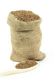 Caraway seeds in burlap bag and over wooden spoon. Royalty Free Stock Images