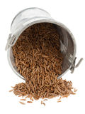 Caraway seeds in little bucket Stock Image