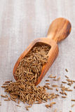 Caraway seeds in scoop Stock Photos