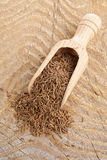 Caraway seeds in scoop Royalty Free Stock Photography