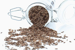 Caraway seeds spilling from glass jar on white background Royalty Free Stock Images