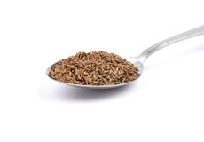 Caraway seeds on spoon Stock Image