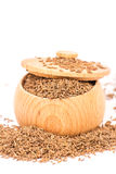Caraway Royalty Free Stock Images