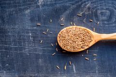 Caraway seeds in wooden spoon dark background. Close up wooden spoon filled with cumin or caraway seeds on dark wooden surface royalty free stock photos