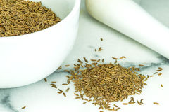 Caraway, spice and medicine Royalty Free Stock Images