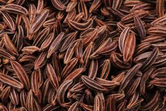 Caraway spice texture Stock Images