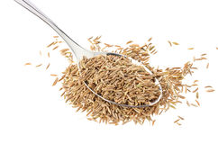 Caraway in spoon isolated on white background Royalty Free Stock Images