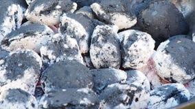 Carbón ardiente almacen de metraje de vídeo