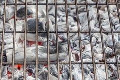 Carbón blanco listo para cocinar en una parrilla de la barbacoa Imagen de archivo