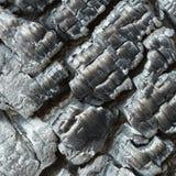 Carbón de leña foto de archivo