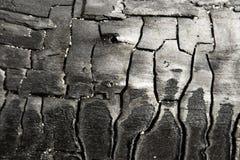Carbón de leña Imagenes de archivo