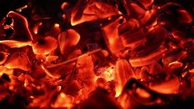 Carbón de leña ardiente en la oscuridad almacen de metraje de vídeo