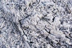 Carbón de leña de madera Fotografía de archivo