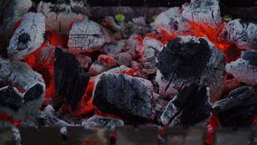Carbón de leña en el brasero metrajes