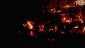 Carbón de leña de la hoguera metrajes
