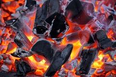 Carbón de leña que brilla intensamente Fotos de archivo
