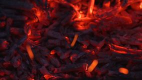 Carbón de leña que brilla intensamente con las chispas almacen de video