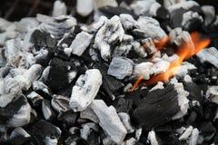 Carbón de leña que calienta para arriba. Imagenes de archivo