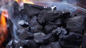 Carbón de leña que quema en parrilla metrajes