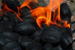 Carbón de leña y fuego Imágenes de archivo libres de regalías
