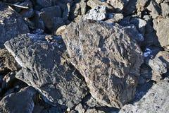 Carbón del lignito Foto de archivo