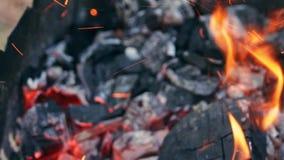 Carbón que quema en un Bbq de la parrilla del brasero metrajes