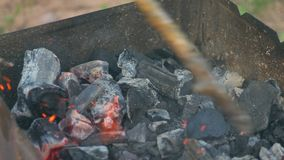 Carbón que quema en un Bbq de la parrilla del brasero almacen de video