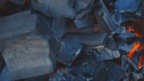 Carbón que quema en una parrilla del brasero almacen de metraje de vídeo