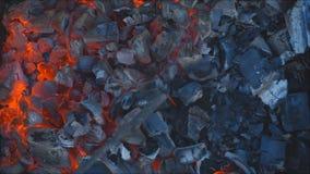 Carbón que quema en una parrilla del brasero metrajes