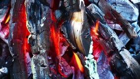 Carbón y fuego de madera almacen de metraje de vídeo