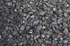 Carbón y hojas foto de archivo