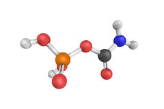 Carbamoyl phosphate, an anion of biochemical significance. In la Stock Photos