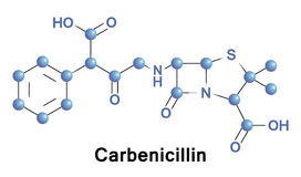 Carbenicillin is bactericidal antibiotic Royalty Free Stock Photo