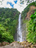 Carbet Falls Guadeloupe Royalty Free Stock Image