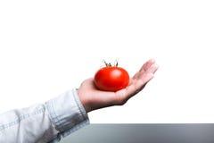 carbohydrates Imagem de Stock