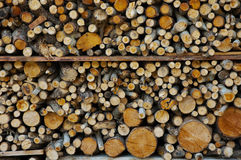 Carbon Neutral Fuel (logs) Stock Photos