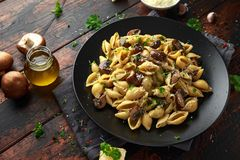 Carbonara mushrooms pasta Conchiglie with creamy sauce, parmesan cheese and herbs stock photography