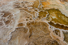 Carbonate de calcium cristallisé chez Mammoth Hot Springs Photographie stock