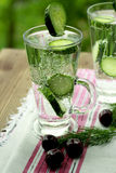 Carbonated bottled water with cucumber dill and cherry. Clean drinking water with cucumber and dill in a glass on a linen napkin Royalty Free Stock Photography