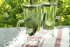 Carbonated bottled water with cucumber dill. On green background Royalty Free Stock Image