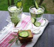Carbonated bottled water with cucumber, dill and toast on a wood Stock Image