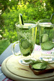 Carbonated bottled water with cucumber, dill and toast on a wood. Cold drinking water in a glass with cucumber and dill on a wooden board Stock Photography