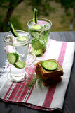 Carbonated bottled water with cucumber and dill. Carbonated bottled water with cucumber, dill and toast on a wooden table Royalty Free Stock Photography