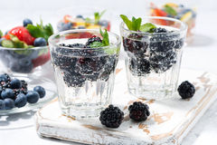 Carbonated drinks with berries Stock Photography