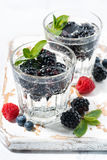 Carbonated drinks with berries, vertical top view Royalty Free Stock Image
