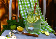 Carbonated lemonade in the pitcher on the chair in the garden Royalty Free Stock Image