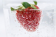 Carbonated water with fresh strawberries, closeup Royalty Free Stock Photography