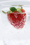 Carbonated water with fresh strawberries, vertical closeup. Carbonated water with fresh strawberries, closeup Stock Image